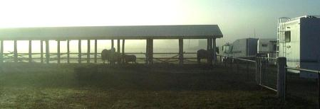 horse-stables-and-foggy-dawn