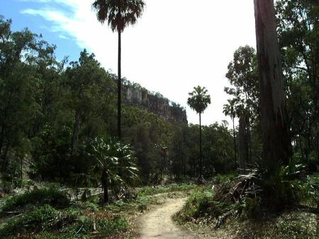 Part of Main Trail.