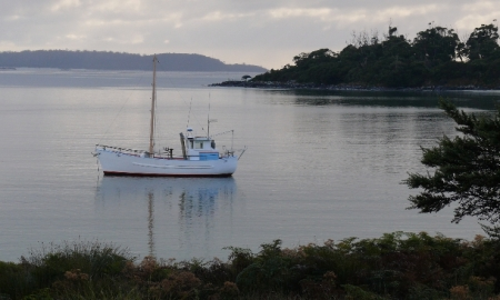 Dawn at Cockle Creek on D'Entrecasteaux Channel / Harbour.