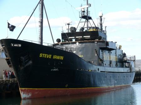 "S.S. ""STEVE IRWIN""."