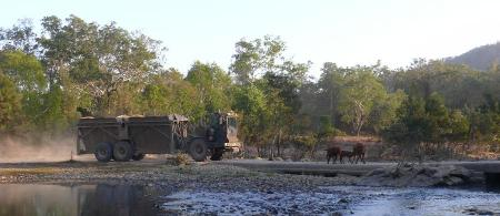 Confrontation between haulout tractor and Brahmann's.