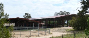 New England Girls School Equestrian Centre. These very expensive under cover arena's are for the sole use of the students at the school.