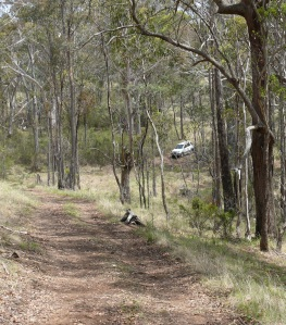 4WD track to Captain Thunderbolts Cave.