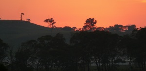 Early morning looking across the New England Ranges.