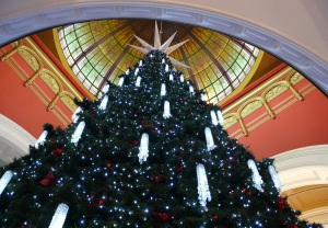 Three storey high Christmas Tree inside the Queen Victoria Building.