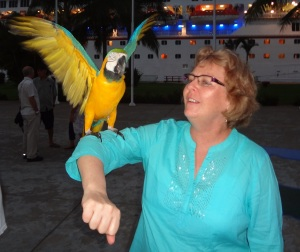 While waitin g to board the pirate ship Donnis made friends with the pirate bird, a Macaw.