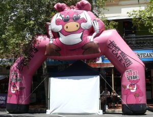 Hogster Stage