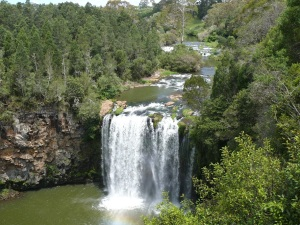 Dangar Falls at Dorrigo. As seen from the viewing platform.