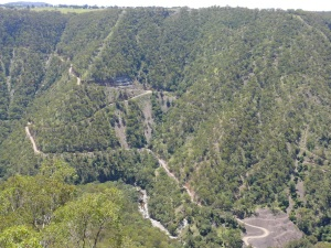 Metz Gorge. Note the gravel track to the river and the gold workings cut into the hillside.