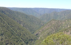 The Metz Gorge , which is part of the Oxley Wild Rivers National park.