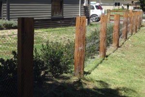 Fence around cottages at Willow Tree.