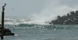 Waves beaking inside Forster harbour walls.