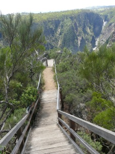 Steep stair case to viewing platform at Wollomombi Falls.