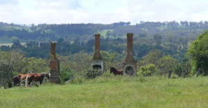 House ruins on the access road to Wollombi Falls in the Oxley Wild Rivers National Park...Wollomombi section.