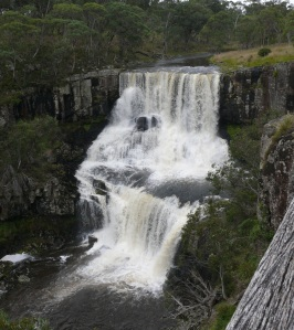 This is upper Ebor Falls during the floods.