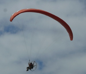 We were walking along Coledale Beach when we heard a noise above us. We Looked up just in  time to see this motorised parachute fly by.