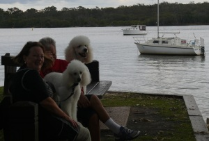 One of the people was embarrassed at being photographed with the Poodles. Awww!