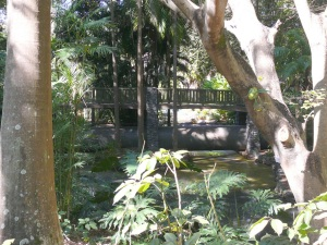 070813 gardens 13