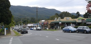 Part of the small village of Canungra.