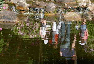 Reflections in a Japanese garden