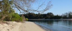 Currumbin Creek estuary.