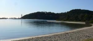 More of the Currumbin Creek estuary. A busy place in the mornings.