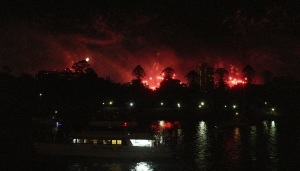 This view of the fireworks is looking over the Brisbane Botanical Gardens and the Queensland University of Technology. It appears to be on fire.