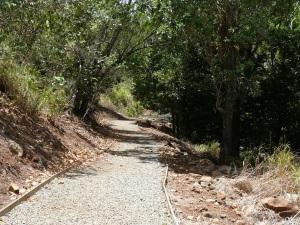 Airlie Creek pathway...Grade 1.