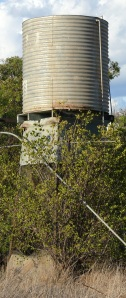 Everybody has an ancient rusting water tank in the yard.