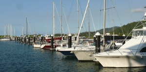 Marina at Port of Airlie.