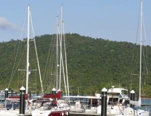 "Boats in the marina with the mansion  ""CHESAPEAKE"" on top of Mount Chesapeake."