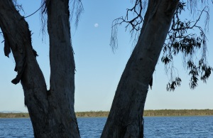 The moon rises over Lake Elphinmstone.