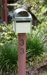 Our new letterbox with profusion of yellow flowers in the background.