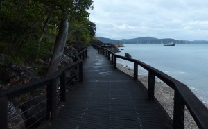 The pathway has become a boardwalk of which there are several along the walk to Cannonvale.