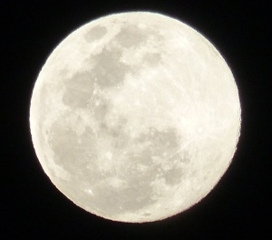 Super Moon with hand held camera.