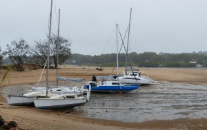 The crteek dries out at low tide.