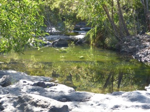 More the the Cedar Creek split.