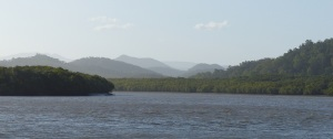 Proserpine River looking north.