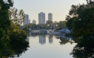 We are twebty paces from our own private park on Biggera Creek which becomes part of a huge canal system. This is part of the view.