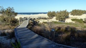 The boardwalk below the Sruf Club at ocean beach on South Stradbroke. As in many other places on the island the sandhills are marching slowly but surely across the island. Look closely at the end of the boardwalk and you can see it is now covered by sand.