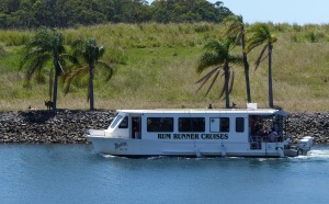 The good ship Rum Runner which took us to South Stradbroke. Note the kangaroos lazing on the bank above the bow.