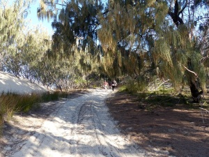 The long gradually steepening track to the top of the sand dune.