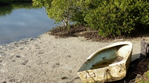 On Weyba Creek which flows into Noosa River I found this decaying dinghy.