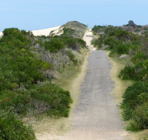 Service access road to the Wanda Beach /Greenhills Beach sand dunes.