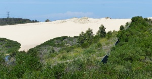 Greenhills Beach tall sand dune.