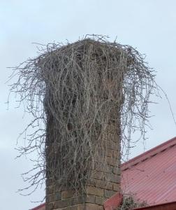 Closeup of chimney.