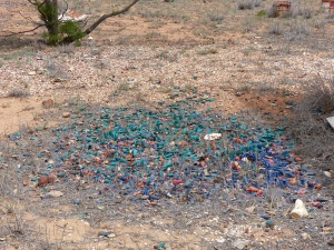 Out in the arid regions around town I found a partially completed shed and behind it was this mound of used shotgun cartridges. That's a lot of wasted $$$ sitting on the ground.