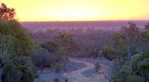 The sun is sinking fast and highlights the twisting red earth road disappearing in the gloom.