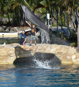 A young boy plucked from the audience was thrilled give instructions to the dolphins