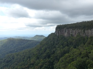 Escarpment of Springbrook National Park